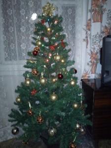 Новогодняя елка фотография картинка